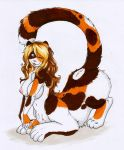 Chakat Patches by catnamedfish