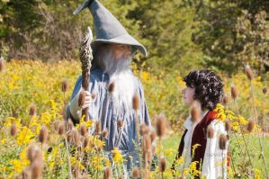 Gandalf and Frodo by ThroughTheStones