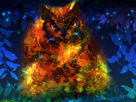 Magic Owl by SuliannH