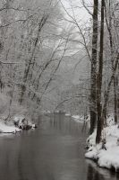 Powells Creek in Winter by arkansawyer