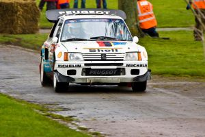 Peugeot 205 T16 by Willie-J