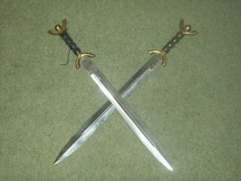 Coralanthas Lefton's dual blades. by Wolfmoot