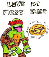 Valentine's Day 2014 Turtle Style by Manda-of-the-6