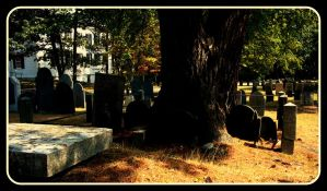 Uprooted Graves by Just-Anyes