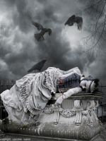 What became of The Widow Stoker by carolinesphotos