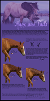 Mane and tail tutorial by equinestudios
