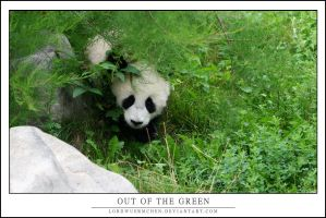 Out of the green by AF--Photography