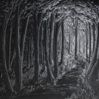 Noir Forest by crazycolleeny