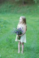 On flowered field 10 by anastasiya-landa