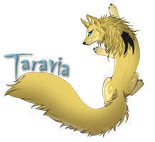 New ID 2013 by Taravia