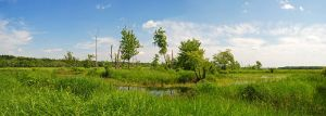 Nother panorama by LucieG-Stock