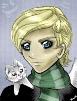 Draco and the Ferret by Buuya