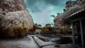 iNfraRed - Chinese Gardens 6 by shin-ex