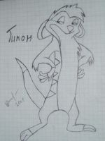 Timon by FurryWolf