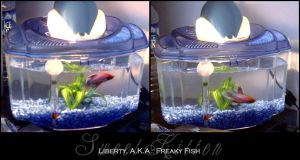 Liberty, A.K.A. Freaky Fish by sweetkitten