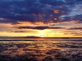 Cook Inlet by Djohns
