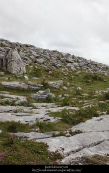 The Burren9 by faestock