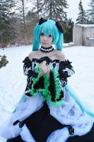 Photography: Cantarella Miku 8 by DMinorDucesa