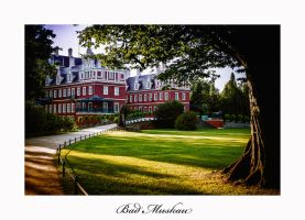 Bad Muskau Castle - Evening by calimer00