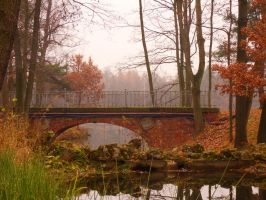 Bridge in the Forest by misza1