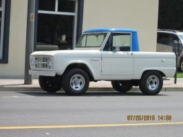 Ford Bronco. pic 2. by catsvsfox