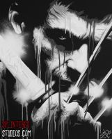 The Wolverine by StephenQuick