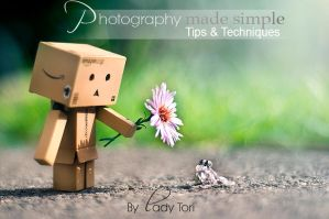 Photography Tips e-book   JUST 7.50 for 2 days by Lady-Tori