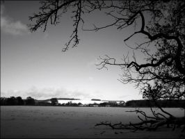 Wolds 01 by Cique