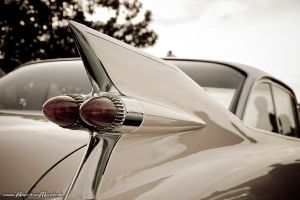 59Fin by AmericanMuscle