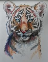 Tiger Cub by Jaylynessa