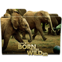Born To Be Wild Final 3D Icon by 87ashish