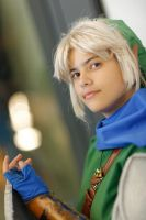 Link Hyrule Warriors by Grenier-Illiane