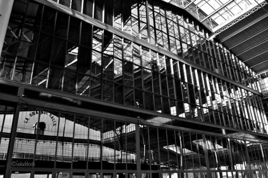reflection in black and white by valaddoch
