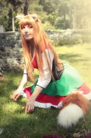 Horo - Spice and wolf ( Bawaria dress art) by MilenaHime