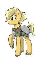 New Knight for Equestria by MrRowboat