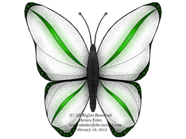 OCR: Daedalus Butterfly 1.0 by TerranDesigns