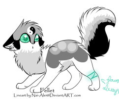 Black and White - Adoptable - Auction - SOLD by DelennOfMir