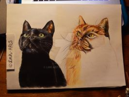 Work in progress (My lovely Cats) by Lmk-Arts
