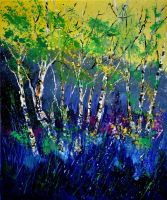 Birch trees 56 by pledent