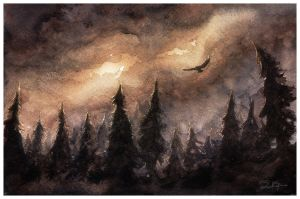 Mystical Forest of the North by dannieborg