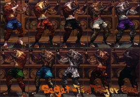 Sagat-Tiger God Final Updated for USF4 by MaesterLee