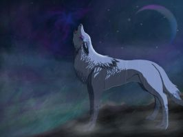 Wolf of the night. by Ameliila