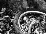 Lost Tire by loueeze