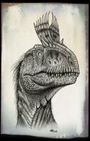 Cryolophosaurus head 2 by MALvit