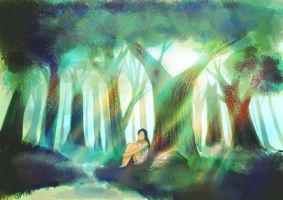 Forest by meisan