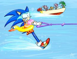 Sonic Water Skiing by SonicFF