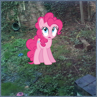 pinkie thinks my back garden is the dark forest by pinky-pie-is-me