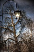 lamp on by klebsky
