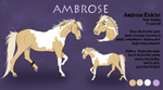 .:Ambrose:. by BrindleTail