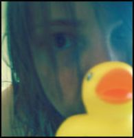 duck seriess_picture 10 by The-M-Flash